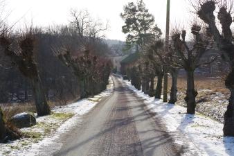 Allén till Kvibergsnäs landeri
